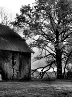 BARNS, SHEDS, AND OUTBUILDINGS in BLACK & WHITE